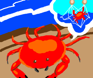 Crab tells of his journey from the sea to land