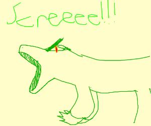 lil green lizard goes SCREEE