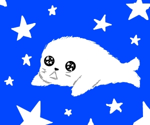 Starry-eyed baby seal