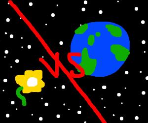 Flower vs. the world