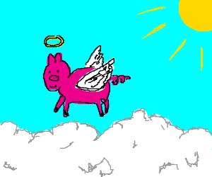 Angel Pig!