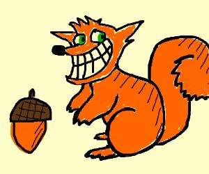 crash bandicoot, but as a squirrel