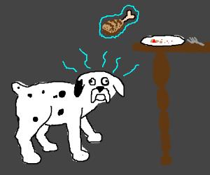 Dog using telekinesis
