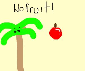 Palm tree vampire fruit disagreement