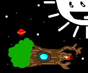 Rocket tree flies into space!