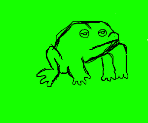 wrinkly toad