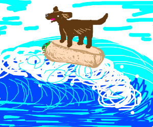A dog surfing on a burrito