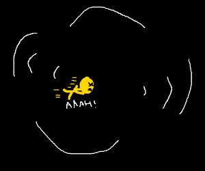 Everything black hole
