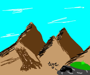 Rock watches poo avalanche