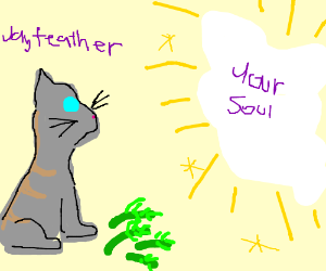 JAYFEATHER WILL STARE DIRECTLY INTO YOUR SOUL