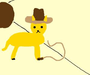 Indiana Jones is a cat