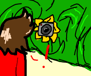 Man sniffs a sun flower and notices a camera