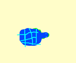 small blue turtle wonders what is happening
