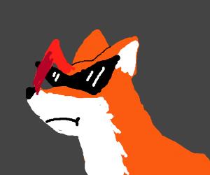 Badass fox
