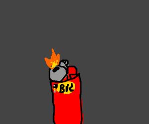 A Bic lighter.
