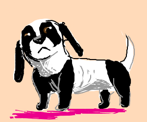 Punny Animal Hybrids: Pandachshund!