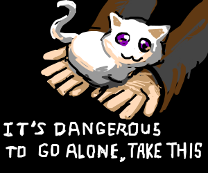 ITS DANGEROUS TO GO ALONE TAKES THIS