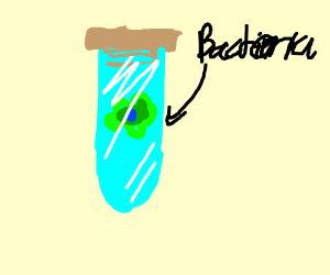 bacteria in a vial