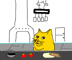 Doge cooking show