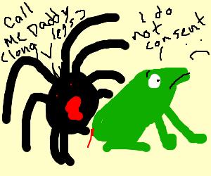 spider rap-eing a frog