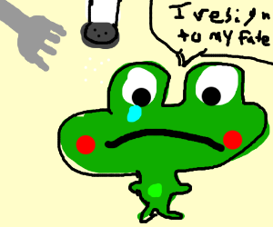 frog is about to get eaten (rest his soul)