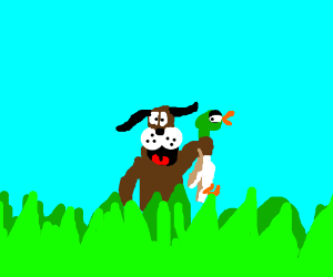 Duck Hunt (the video game)