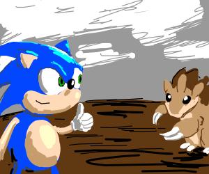 Sonic the Hedgehog has a Sandslash