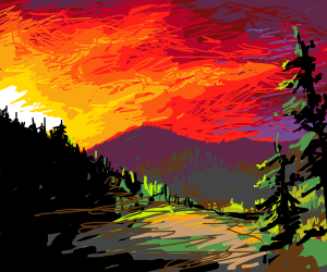 Daybreak over a Pine Forrest