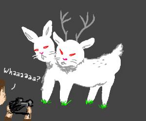 A two headed rabbit-deer. Whaaaaaa?