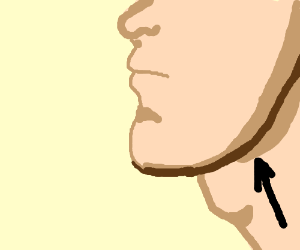 jaw-line