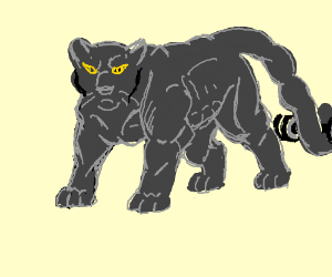 Buff Panther