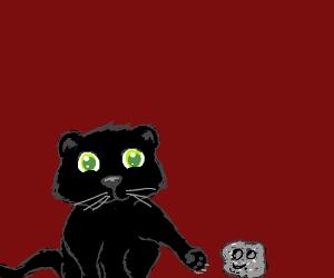 Black Panther's baby pet rock