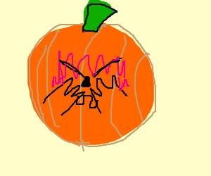 shy jack-o-lantern
