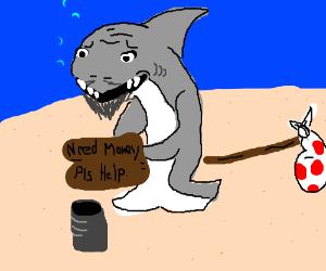 a hobo shark