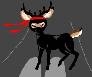 Ninja deer