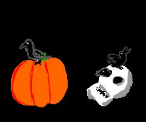 Halloween crows and ravens on skulls + pumpkin