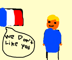 France Flag does not like Trump