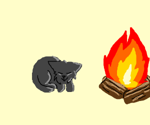 Cat curled up by the fire