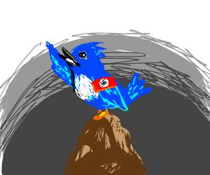 Blue bird is a nazi