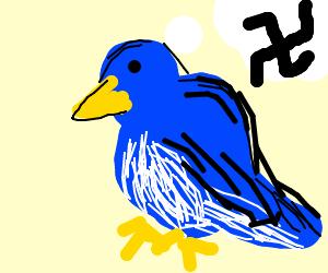 Nazi Blue Robin (bird)