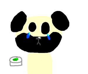 pug doesnt like green food