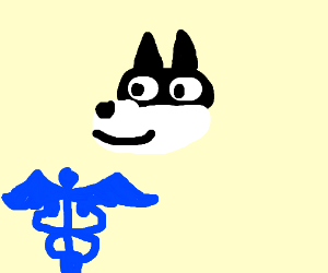 doggo MD
