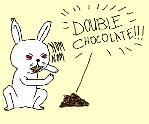 white rabbit eating double chocolate cookies