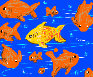 orange fish surrounded by a lot of yellow fish