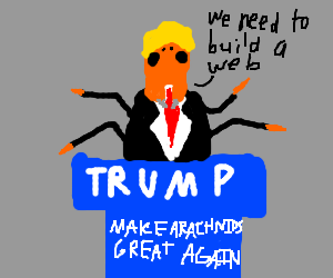 American politics, but with spiders