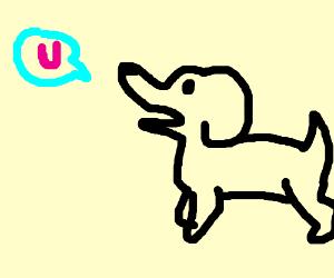 Dog says u