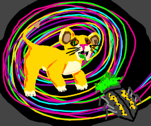 Simba (cub) eats hallucinogenic bug