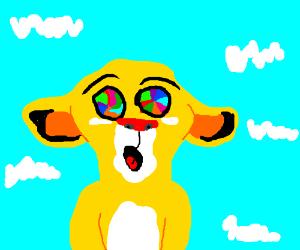 Simba on acid
