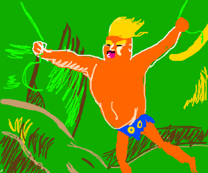 Trump of the Jungle is OK. Swinging vine ties.