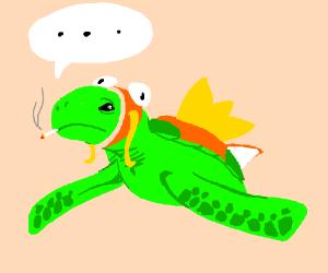 smoking turtle in a Magikarp costume